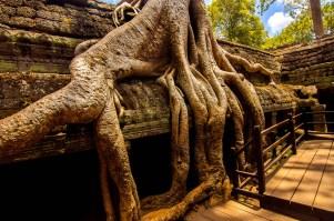 Angkor-2326-Edit