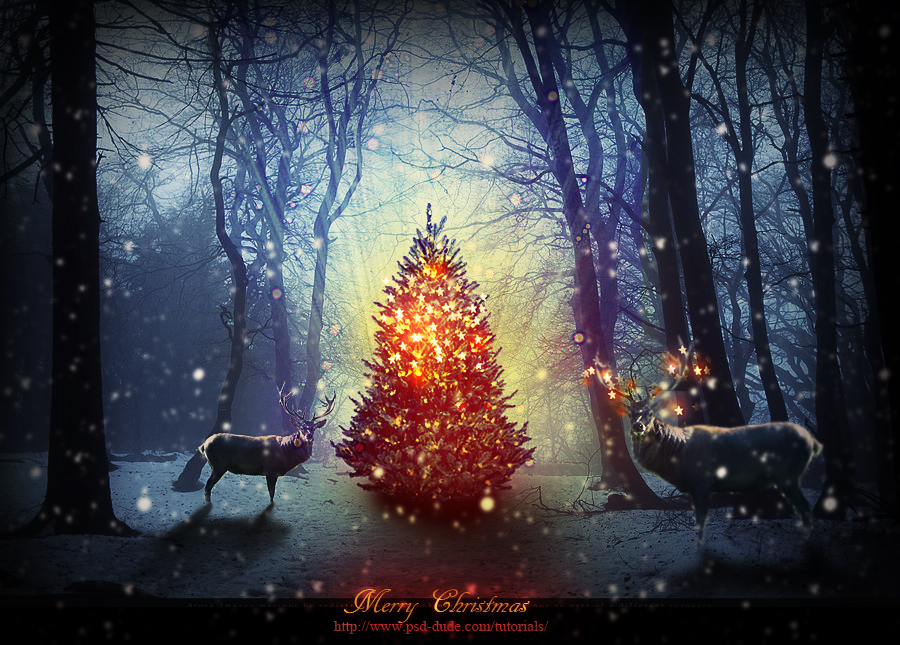 Beautiful Christmas Tree Composition In Photoshop
