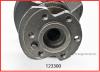123300 crank shaft