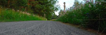 Oderhaffrundweg-bei-Hinters