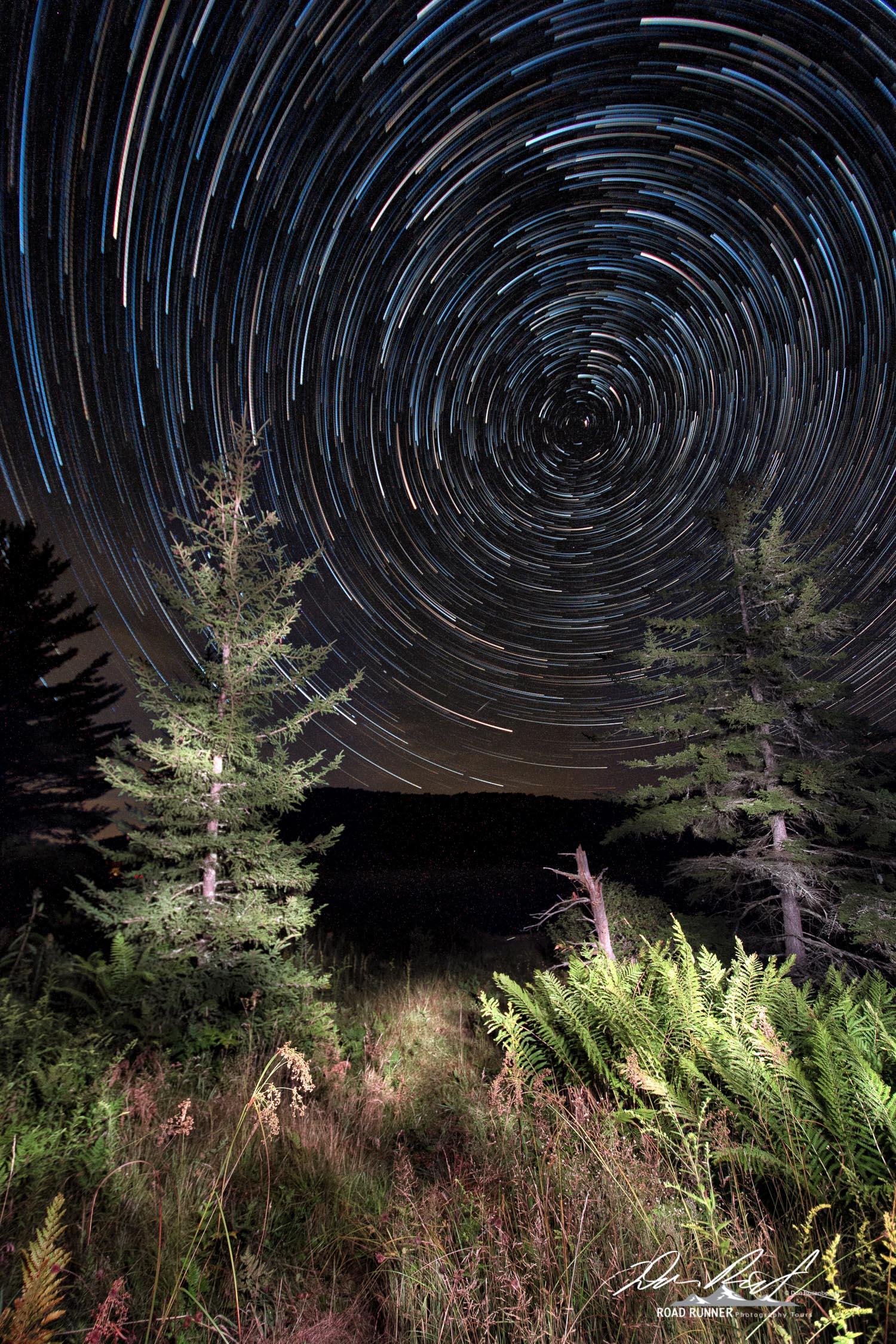 StarStaX__D508242-_D508295_lighten.jpg