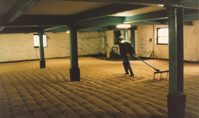 Raking the barley at Bowmore distillery