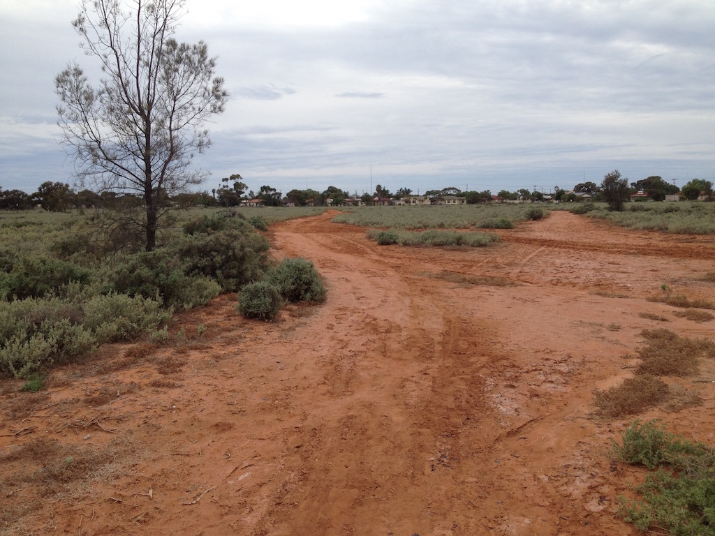 Red dust and saltbush