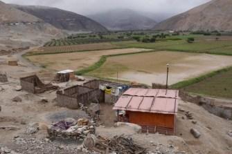 Peru Panamericana