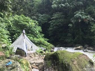 Ketambe Dschungel Wanderung