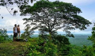 Bolita Rainforest - Corcovado Nationalpark
