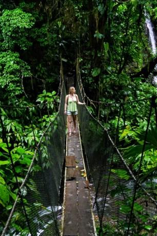 Hängebrücke im Rainmaker Forest