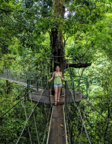 Hängebrücken im Rainmaker Forest