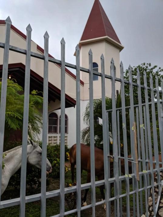 Samara Kirche mit Pferden