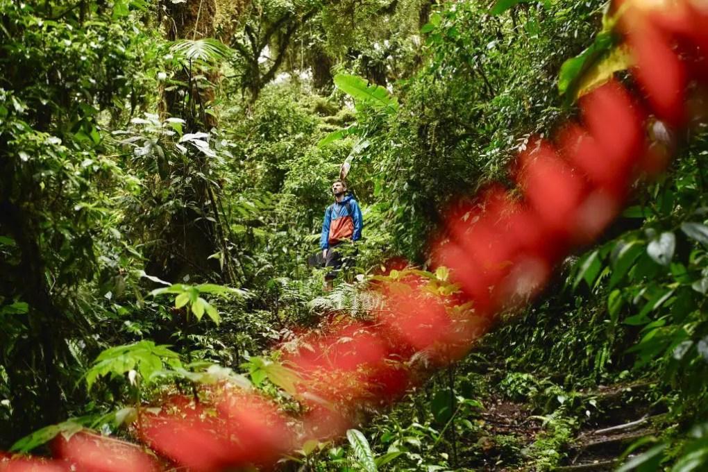 Santa Elena Nationalpark, Monteverde