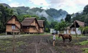 Semuc Champey | Anreise, Tipps und Aktivitäten im Dschungel von Guatemala