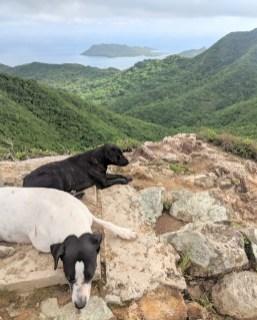 Providencia, The Peak Wanderung