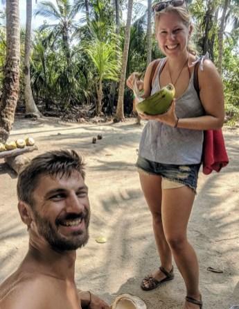 Kokosnüsse im Tayrona Nationalpark