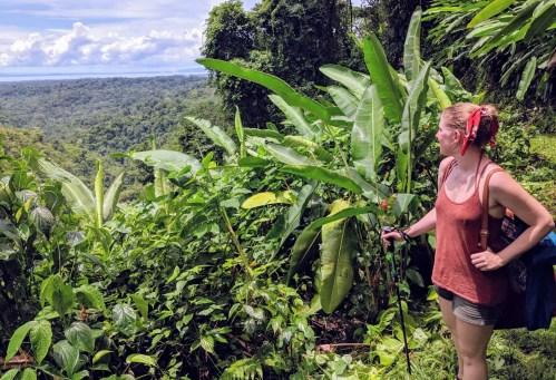 Bolita Rainforest, Corcovado Nationalpark