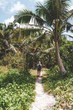 Wanderweg zur Anse Cocos