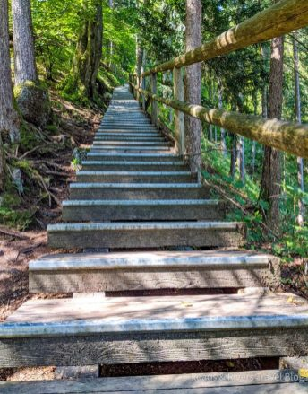 Gollinger Wasserfall - Treppe - nicht für Kinderwagen geeignet