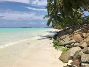 Praslin Seychellen - Reisetipps, Anreise & Highlights