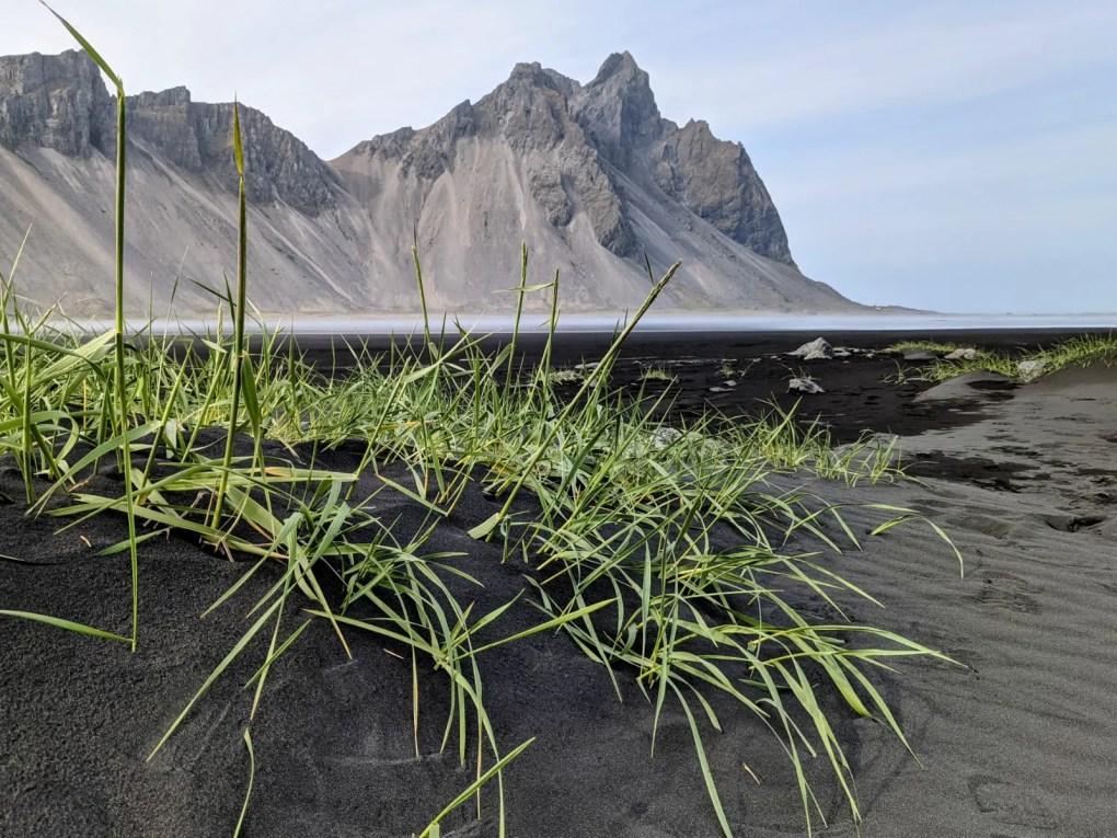 Stokksnes & Vestrahorn I Tipps für das Island-Highlight