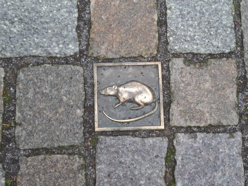 Rat paving stone, Hamelin, Germany