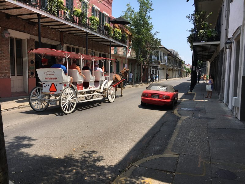 You can opt for a carriage tour to see the French Quarter