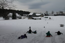 Sledding with farm