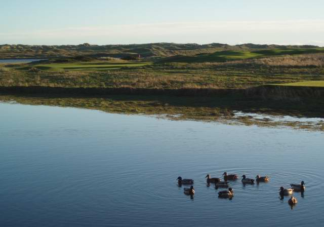 newburgh golf course across river ythan.jpg
