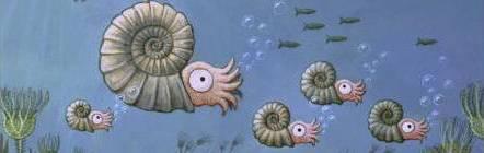 ammonites2.jpg