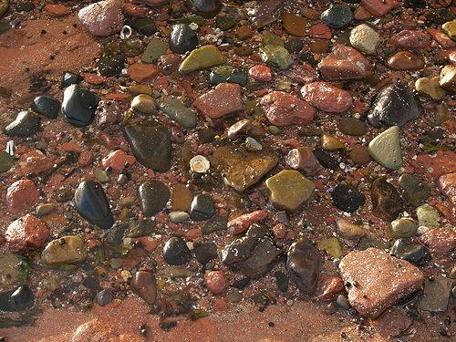 colourful-pebbles-on-the-beach-north-berwick-scotland-by-gingiber-flickr