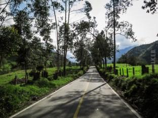 οδηγώντας προς την κοιλάδα Cocora