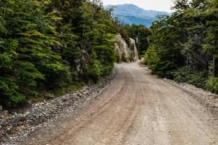 Τα τελευταία χιλιόμετρα στο δρυμό Los Alerces