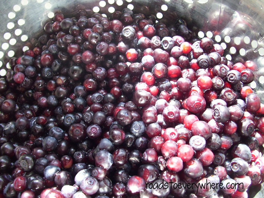 huckleberries3
