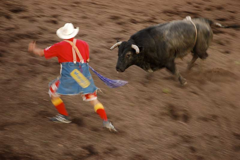 bullfighting at the Oyen Bull-A-Rama
