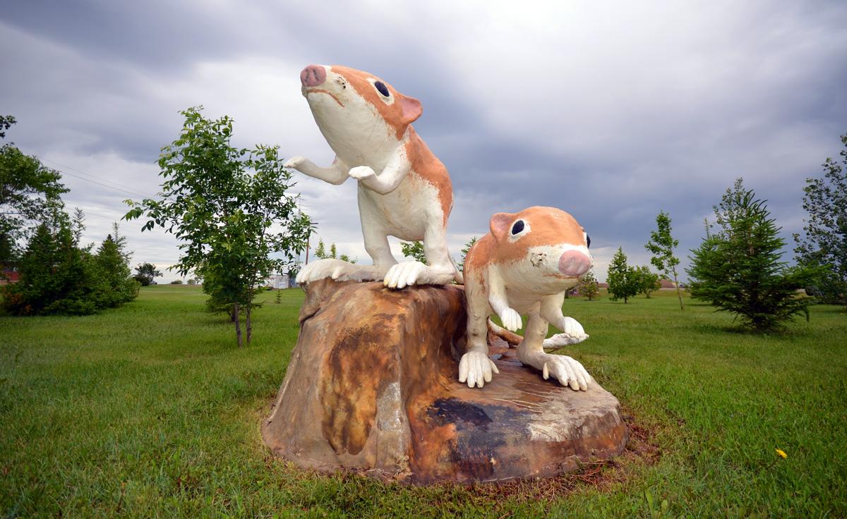Leader, Saskatchewan sculpture. Ord's Kangaroo Rat, 1998, by Ralph Berg