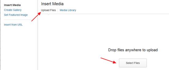 'Upload Files' on WordPress