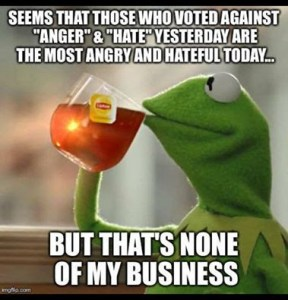 IT'S THE ANGRY WHO VOTED AGAINST HATE