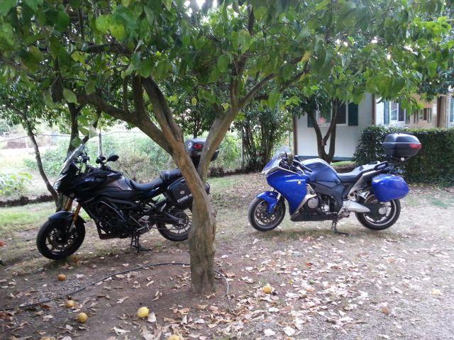 Les motos à côté du mobile-home sous les citronniers