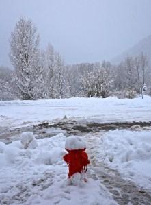 Telluride Snow 3