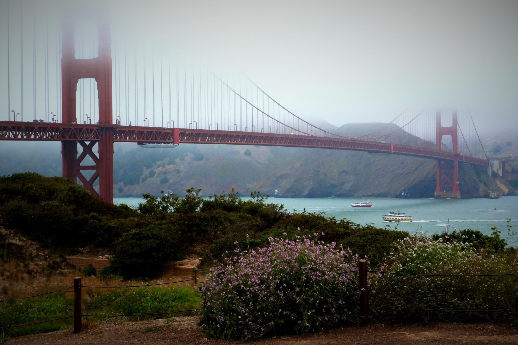 Golden Gate Bridge in the Fog