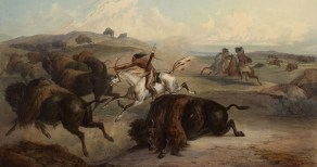 Native-Americans-Hunting-Bison