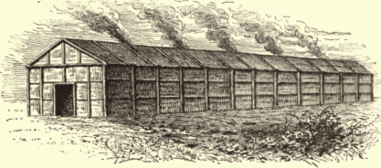 iroquois-long-house