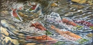 salmon_race
