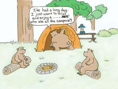 98e820db745a774066afdd3a398543fb--camping-humor-funny-camping