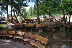 wooden benches in the trees