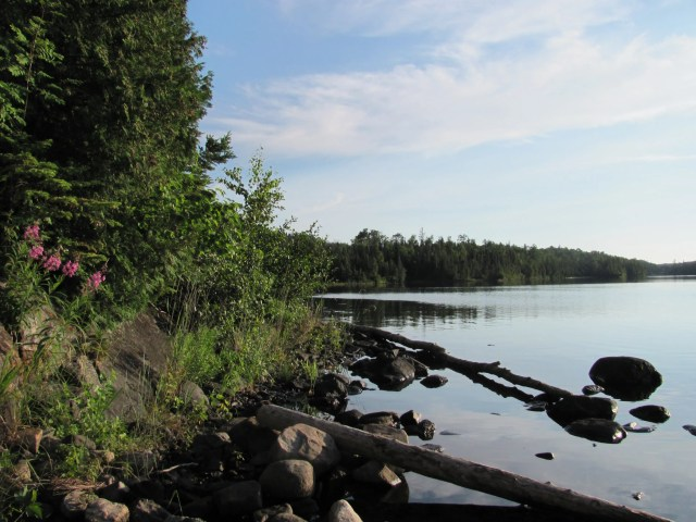 Lane Cove Campground in Isle Royale National Park