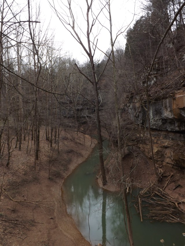 Cedar Sink Trail in Mammoth Cave National Park