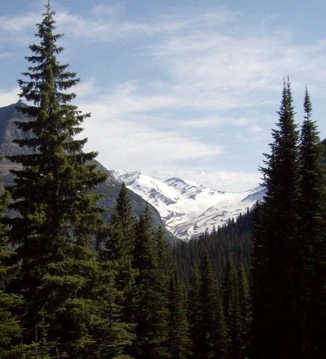 Family Friendly Activities in Glacier National Park