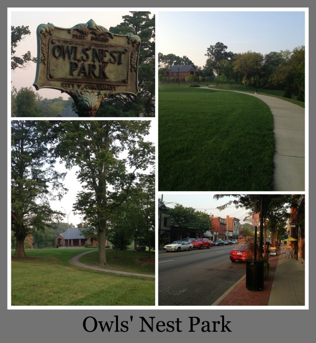 30 Days of Trails in Cincinnati: Owl's Nest