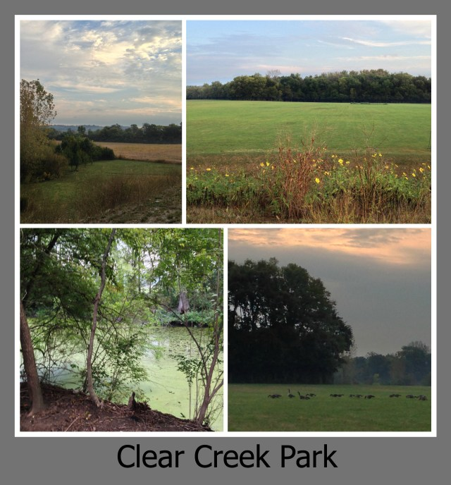 30 Days of Trails in Cincinnati: Clear Creek
