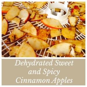 Dehydrated Cinnamon Apples