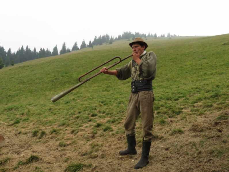 Cowboy at La Jgheaburi